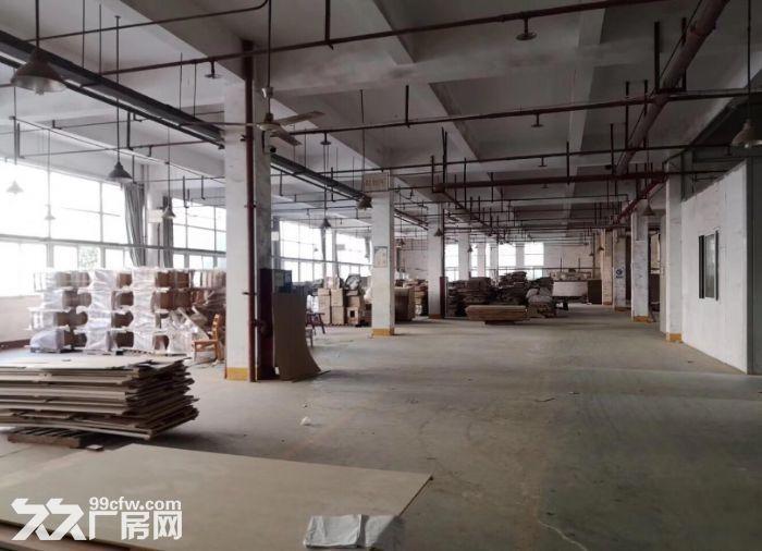 2万方厂房仓库,3000方起租,可办环评,适合家具类生产-图(4)