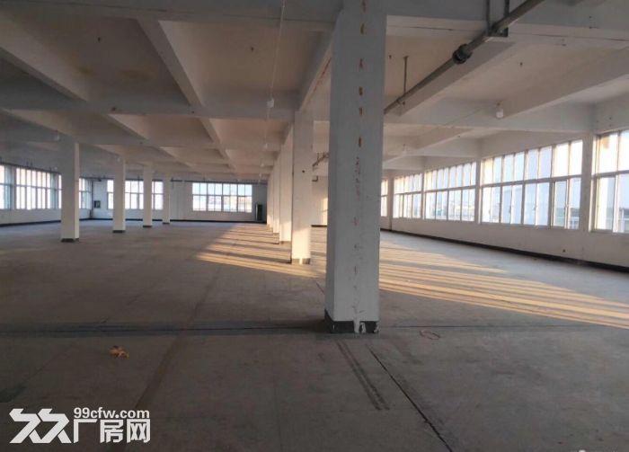 2万方厂房仓库,3000方起租,可办环评,适合家具类生产-图(5)
