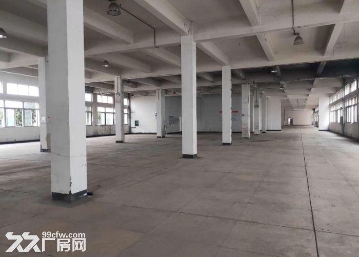 2万方厂房仓库,3000方起租,可办环评,适合家具类生产-图(7)