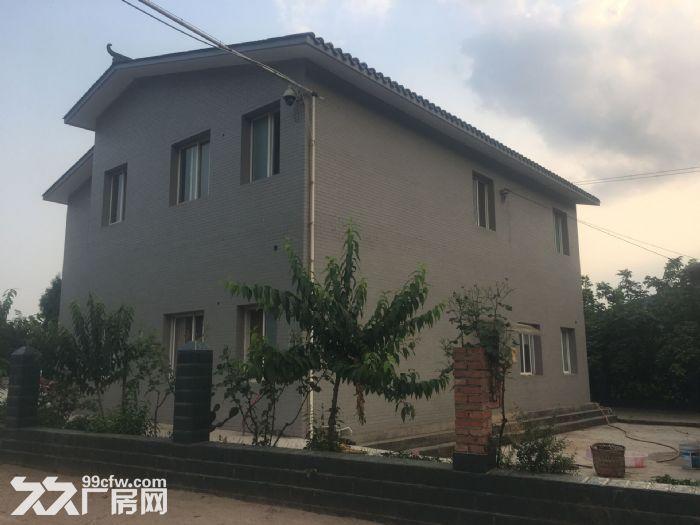 绵阳市游仙区聚农农场出租出售-图(3)