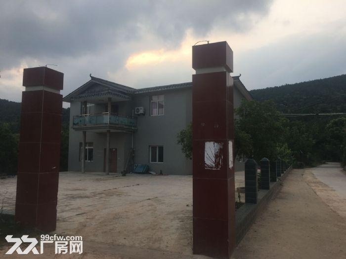 绵阳市游仙区聚农农场出租出售-图(4)
