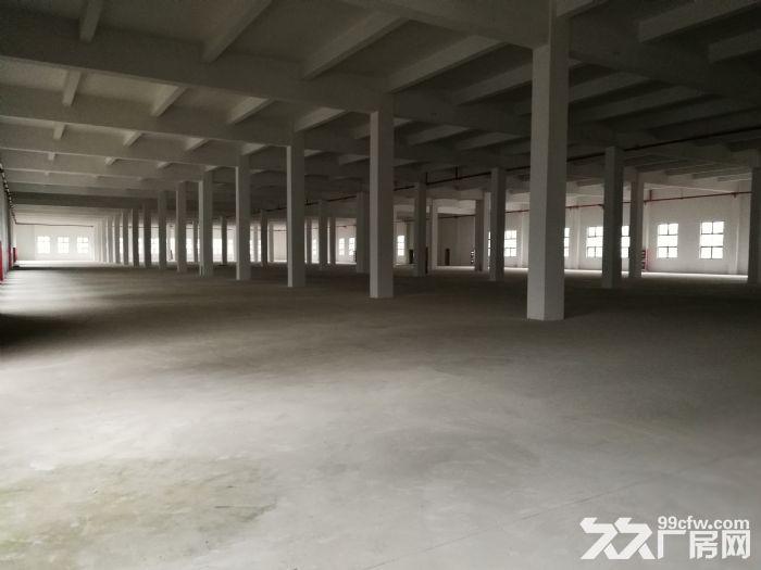 高新区科技城厂房土地出租、转让-图(4)