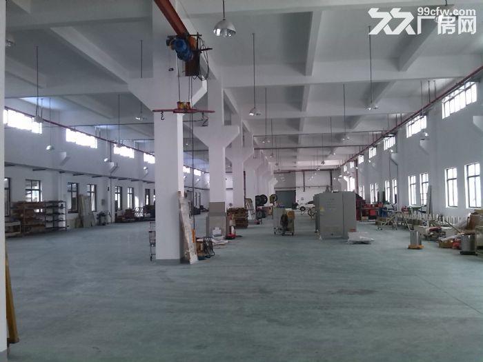 高新区科技城厂房土地出租、转让-图(8)