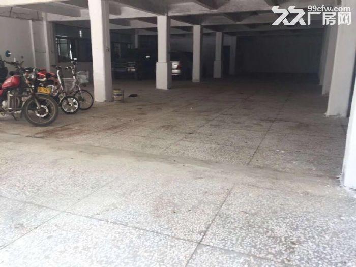 汕樟路与乐山路附近纯楼下厂房出租-图(1)
