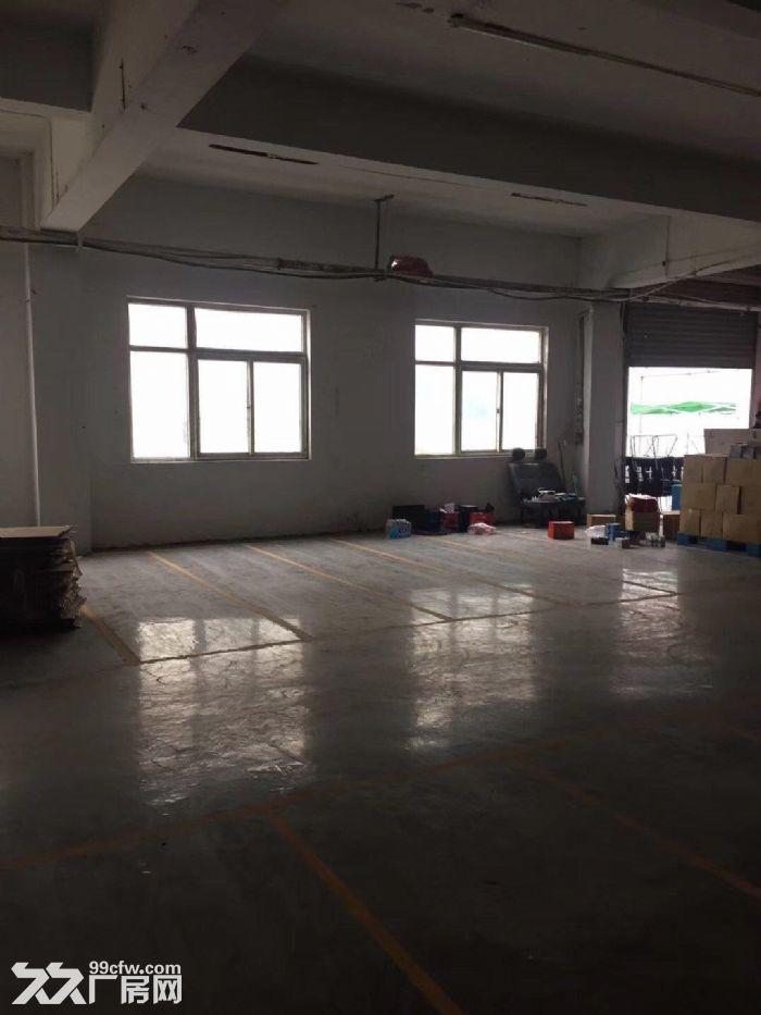 吴中郭巷南纯一楼620平米标准厂房出租-图(2)