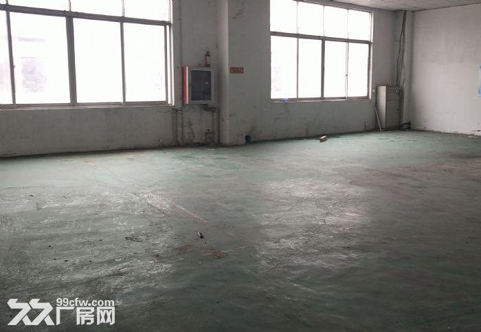 出租吴中区城南二楼带货梯175平米标准厂房-图(2)