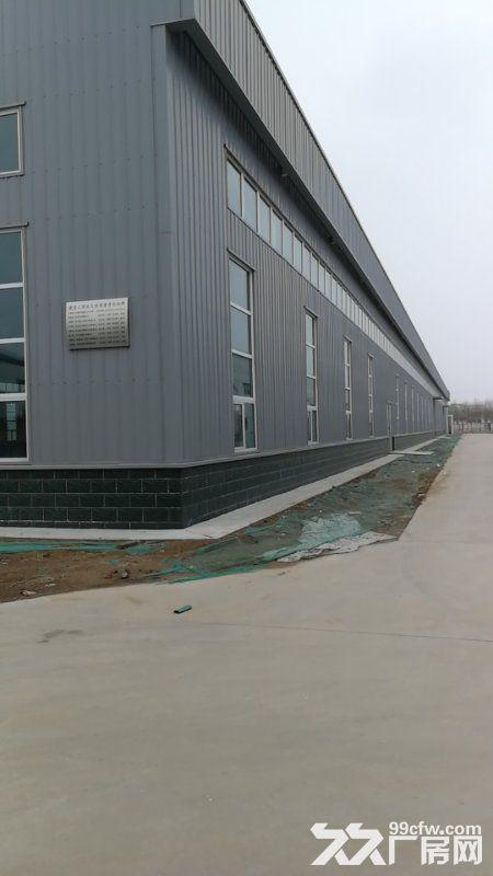 现有两所新建厂房出租,位于沧州经济开发区经七路与解放东路交叉口-图(2)