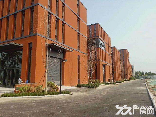省级工业园区800−5000独栋、双拼厂房环评宽松、可生产加工-图(5)