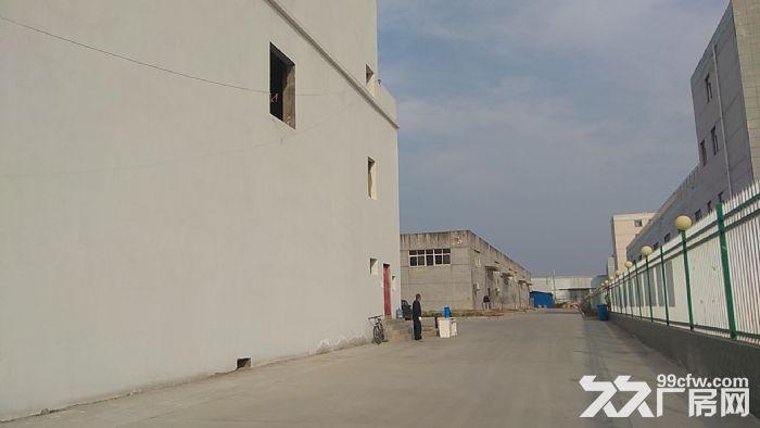 全新厂房简装修随时可入住-图(4)
