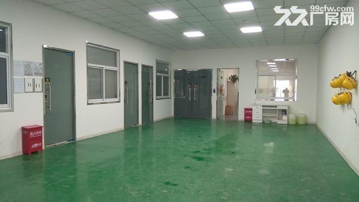 全新厂房简装修随时可入住-图(3)