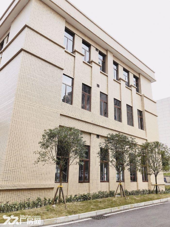 两江新区出租售独立产权标准厂房1000起-图(4)