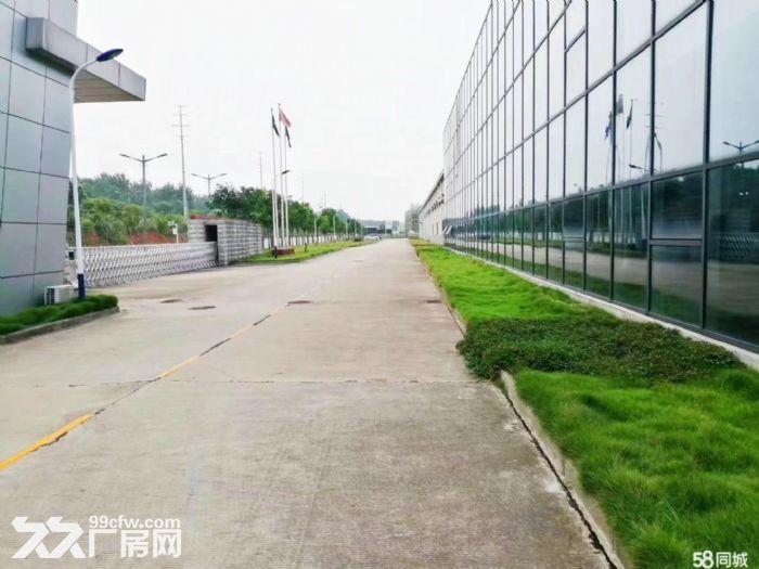 直租!武汉100−20000平米厂房仓库可短租可托管可仓配-图(6)