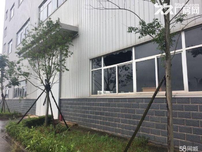 蔡甸军山同创产业园3600平米厂房出租可分租带3吨货梯-图(3)