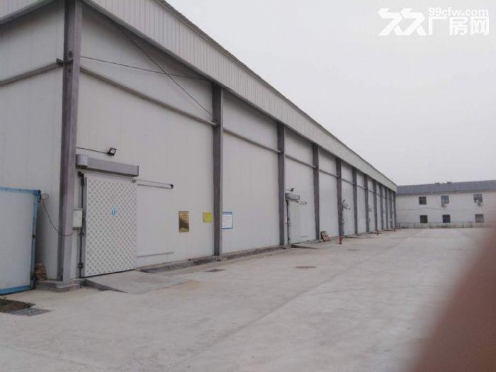 新建大型冷库出租价格优惠-图(1)