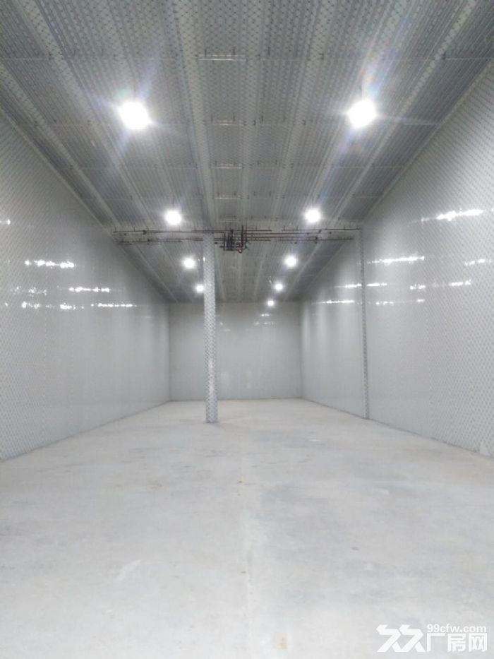 新建大型冷库出租价格优惠-图(2)