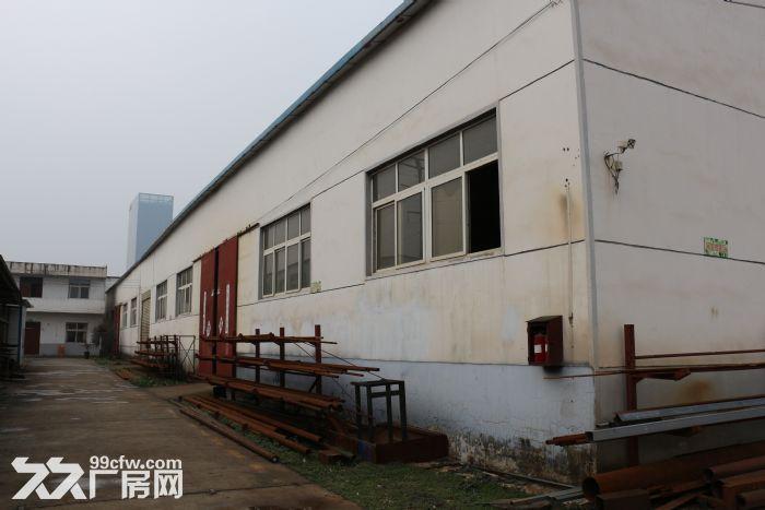 驿城区带院钢结构3000平厂房整体出租-图(3)