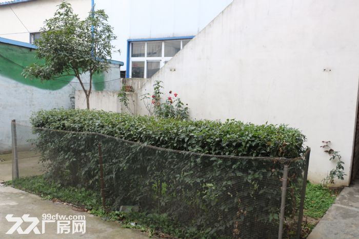 驿城区带院钢结构3000平厂房整体出租-图(7)