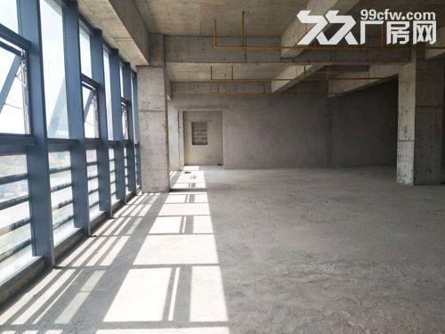 15万平厂房诚招食品行业入驻,单层层高6米-图(2)