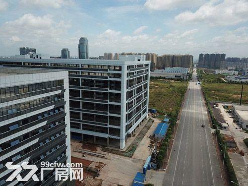 15万平厂房诚招食品行业入驻,单层层高6米-图(4)