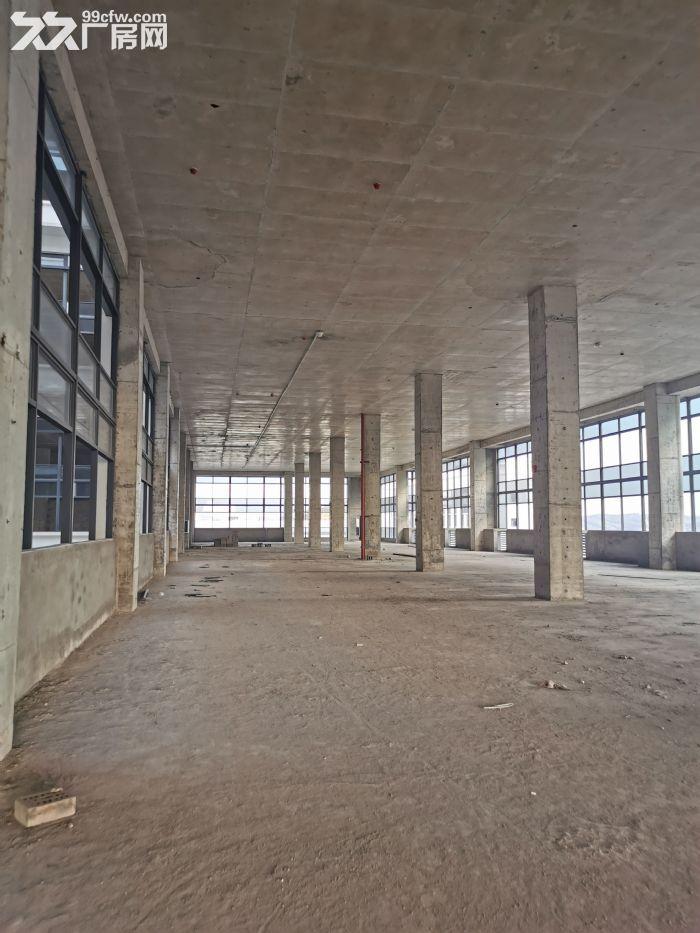 15万平厂房诚招食品行业入驻,单层层高6米-图(5)