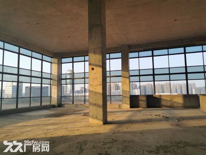 15万平厂房诚招食品行业入驻,单层层高6米-图(6)