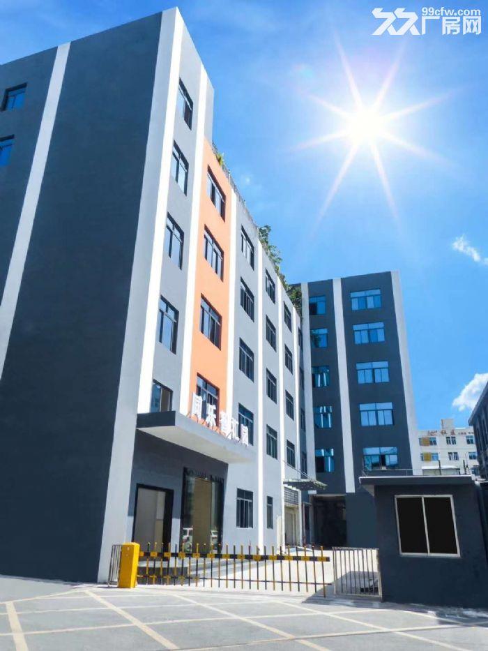 龙华西头工业区8000平方办公厂房出租-图(1)