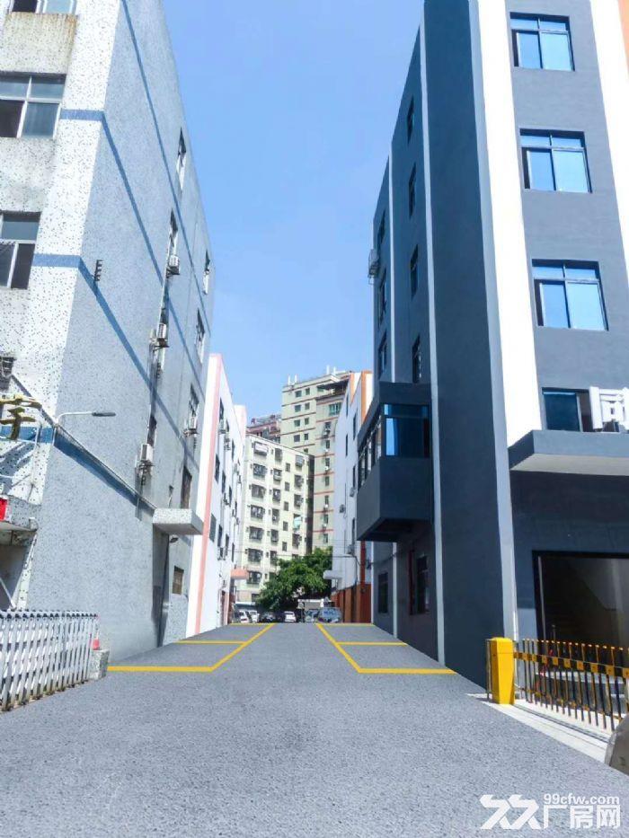 龙华西头工业区8000平方办公厂房出租-图(2)