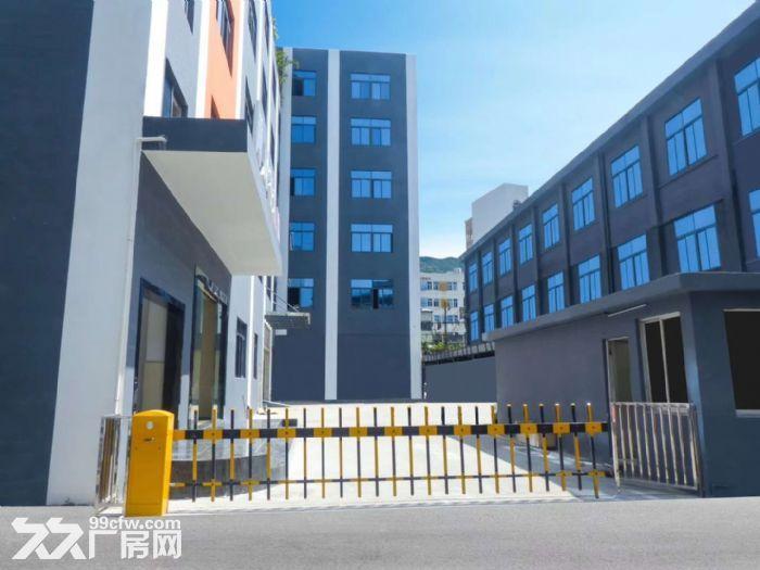 龙华西头工业区8000平方办公厂房出租-图(4)