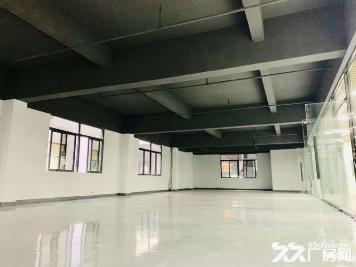 龙华西头工业区8000平方办公厂房出租-图(6)