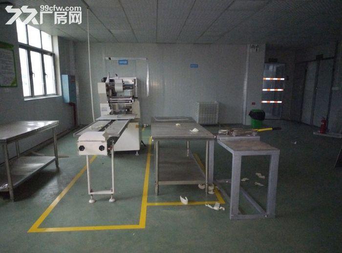 长沙周边厂房无中介,带货梯,设备齐全,面积大,价格实惠-图(5)