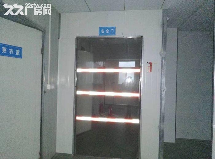 长沙周边厂房无中介,带货梯,设备齐全,面积大,价格实惠-图(6)