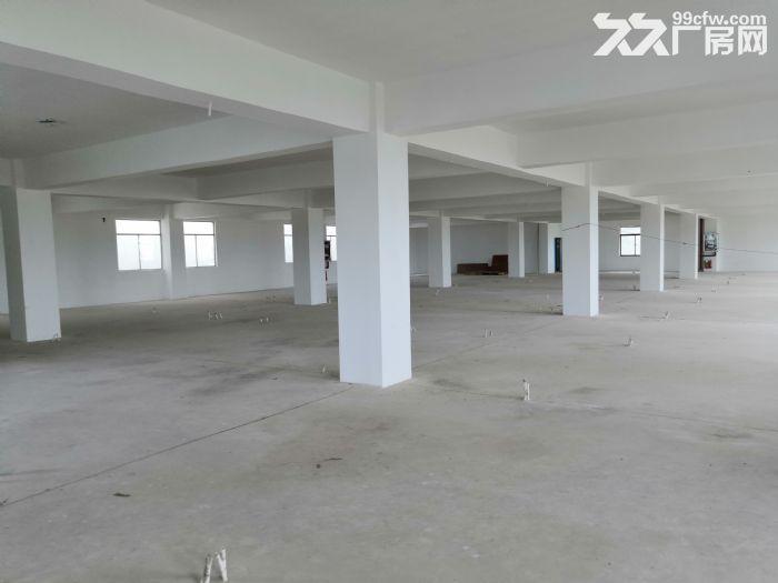 广西−东盟经济技术开发区大量标准厂房招租-图(2)