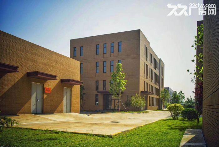 红岛胶州城阳王台项目厂房助力西海岸经济技术开发区厂房带证1200平-图(3)
