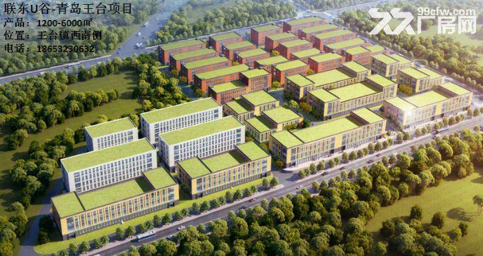 红岛胶州城阳王台项目厂房助力西海岸经济技术开发区厂房带证1200平-图(5)