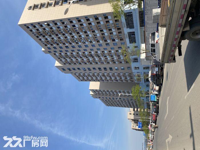 临近义乌国际商贸城,玩具小微园,长三角,珠三角(均有园区)-图(1)