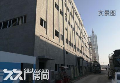 河北新发地食品加工产业园-图(3)