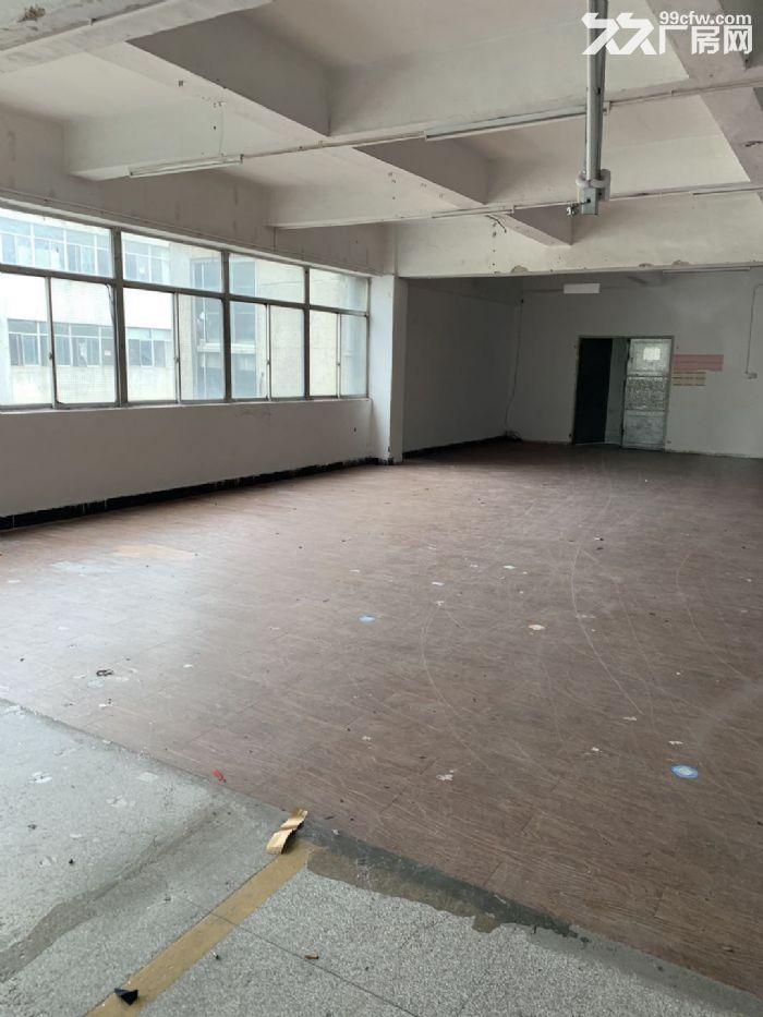 出租龙湖工业区正规仓库和厂房-图(2)