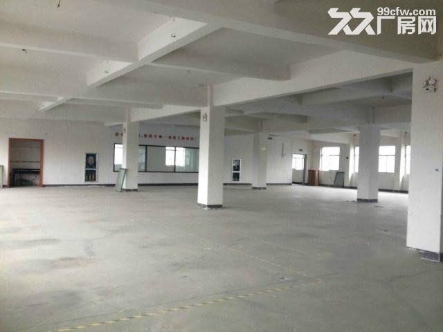 个人.双龙大道旁二楼2800平米电子加工厂房.已精装修-图(7)