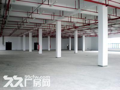 个人.双龙大道旁二楼2800平米电子加工厂房.已精装修-图(8)