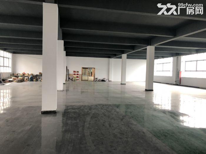 1000至5000平仓储地点出租可放货办公做展厅-图(3)