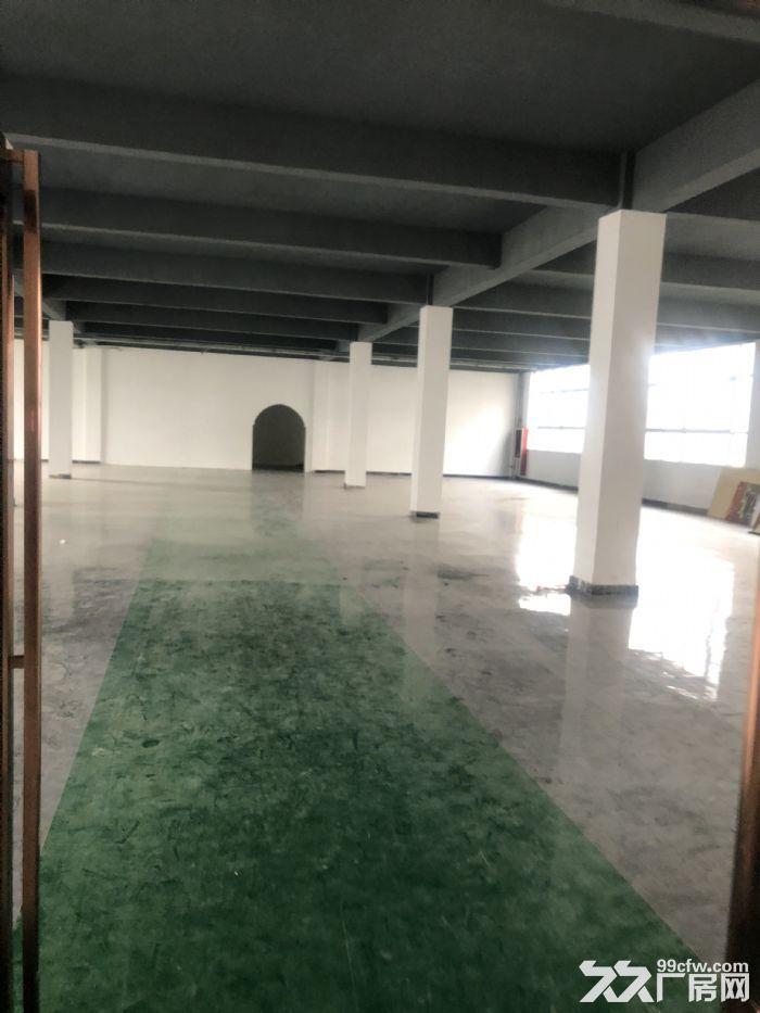 1000至5000平仓储地点出租可放货办公做展厅-图(5)