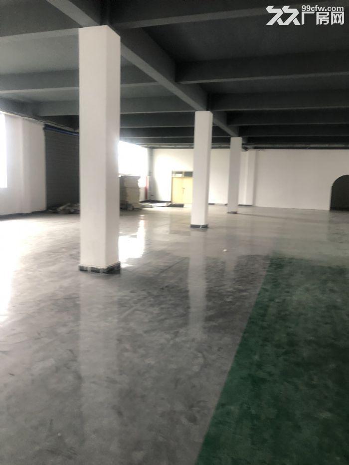 1000至5000平仓储地点出租可放货办公做展厅-图(6)