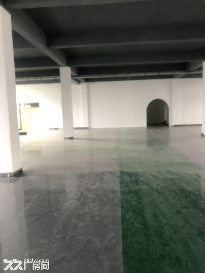 1000至5000平仓储地点出租可放货办公做展厅-图(7)