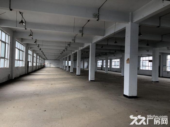 产业园区一楼出租可办公做展厅-图(5)