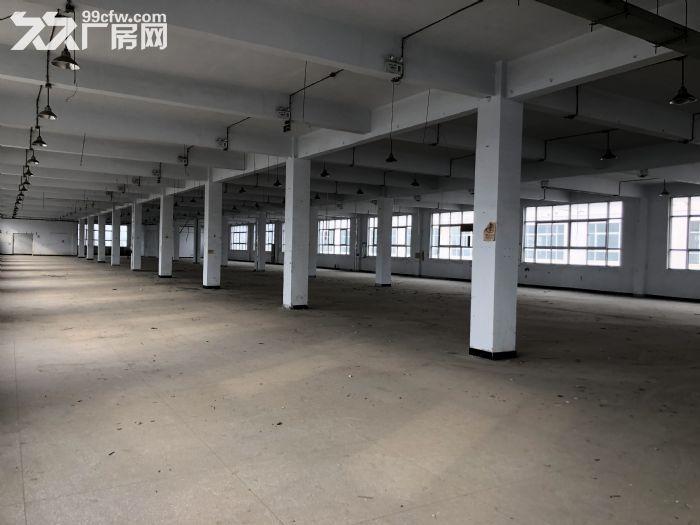 产业园区一楼出租可办公做展厅-图(6)