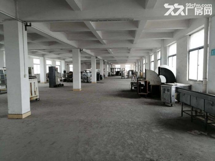 工业区正规工业厂房四五六楼出租-图(3)