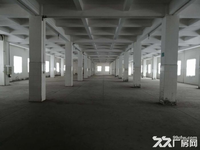 工业区正规工业厂房四五六楼出租-图(4)
