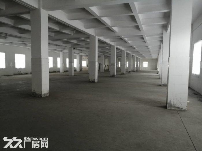 工业区正规工业厂房四五六楼出租-图(5)
