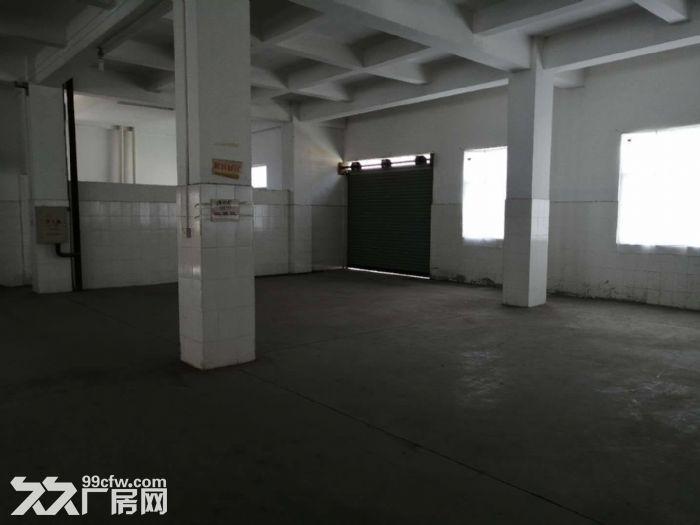 工业区正规工业厂房四五六楼出租-图(6)