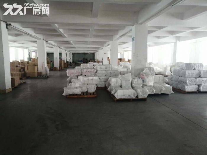 工业区正规工业厂房四五六楼出租-图(7)
